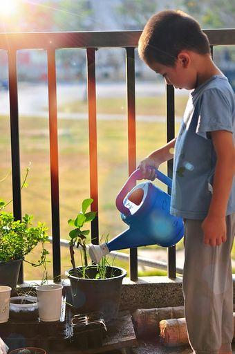 Berkebun di rumah sebagai bagian mengajari anak untuk peduli lingkungan