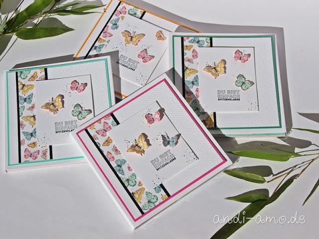 Geschenkverpackung Schmetterlinge Stampin Up