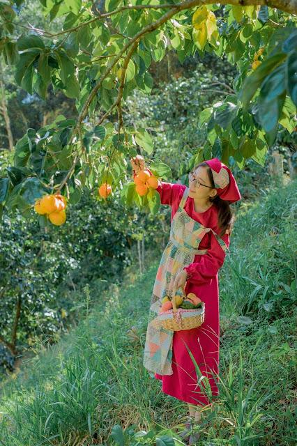 Vườn hồng Đà Lạt