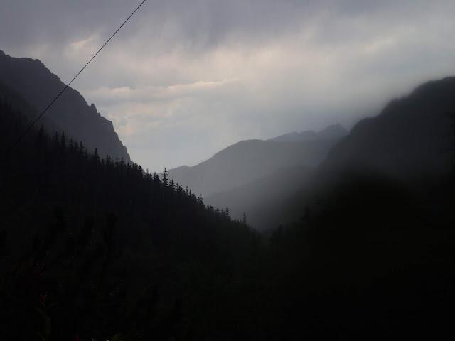 Dolina Roztoki w deszczu