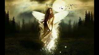 Qual a Caracteristica do Anjos