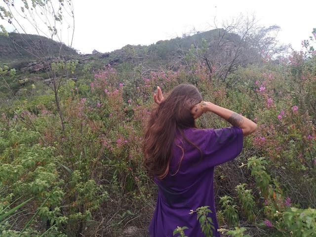 Arara violeta ruadoflow