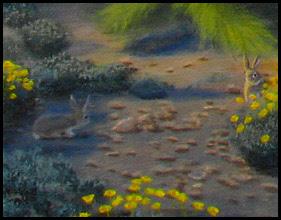 Southwest,southwestern,West,western,desert,cottontail,rabbit,bunny,bunnies,brittlebush,Encelia,flowers