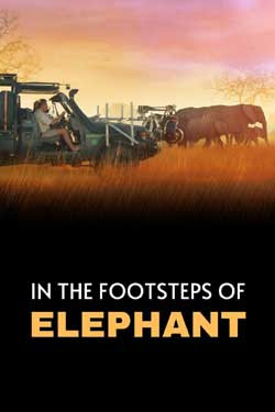 In the Footsteps of Elephant (2020)