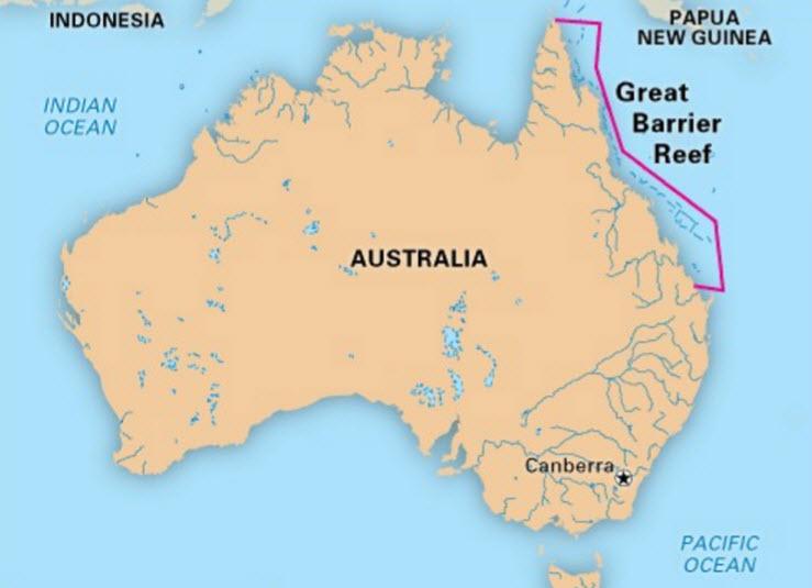 oostkust australie zwemmen in net