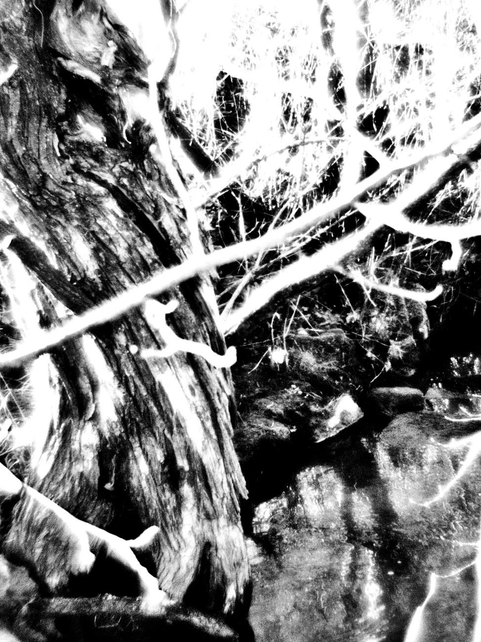 Reißender Fluß in Black Noir