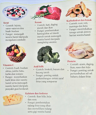 kelas makanan yang diperlukan oleh wanita hamil