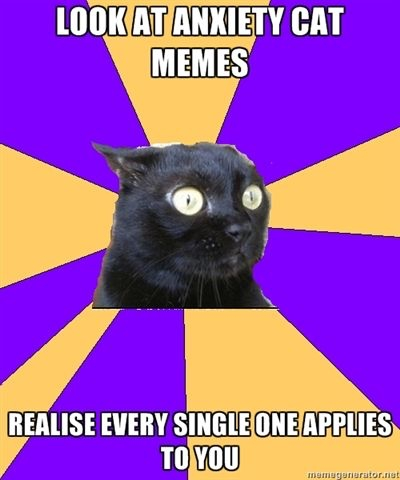 anxiety cat memes relate to you
