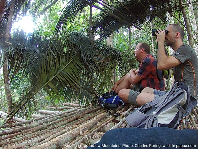 Ecotourism in West Papua province of Indonesia