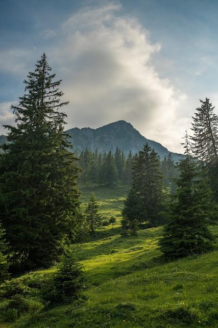 Wanderung auf die Mondspitze  Brandnertal Bürserberg  Wanderparkplatz Tschengla  Alpe Rona  Alpe Furkla 04