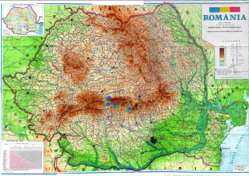 Cutremurele Din Regiunea Fagaras Campulung Cutremur Net