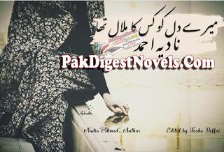 Mere Dil Ko Kis Ka Malal Tha Episode 3 By Nadia Ahmed Pdf Download