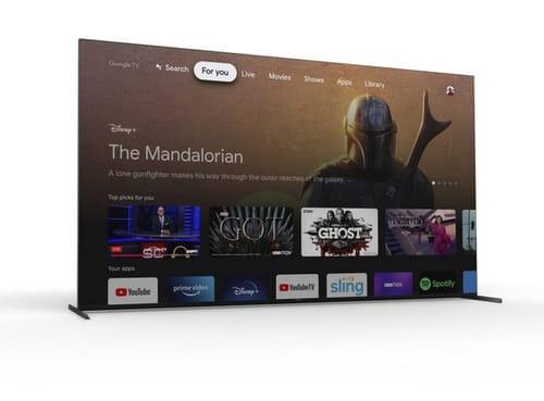 Sony TV runs Google TV and uses HDMI 2.1