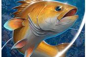 Fishing Hook v2.0.7 Mod Apk (Unlimited Money/No Ads) Terbaru