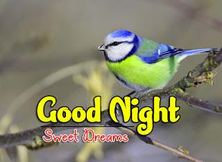 Latest Beautiful Good Night Wallpaper Free Download %2B62