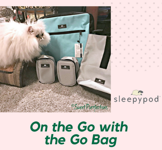 Brulee and the Sleepypod® Go Bag