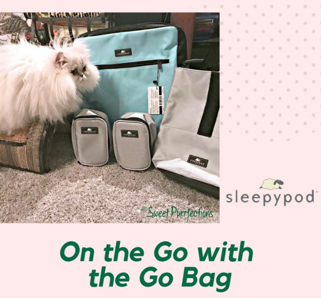 Brulee and the Sleepypod® Go Bag