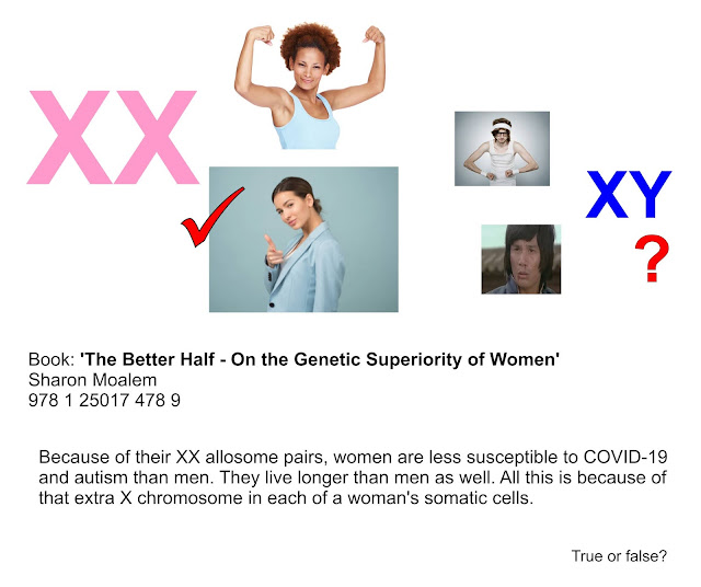 https://www.theguardian.com/books/2020/apr/19/the-better-half-on-the-genetic-superiority-of-women-review-bold-study-of-chromosomal-advantage
