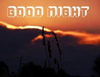 good night love pinterest