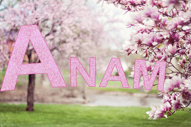 N Name Logo Wallpaper Anam Name Wallpapers A...