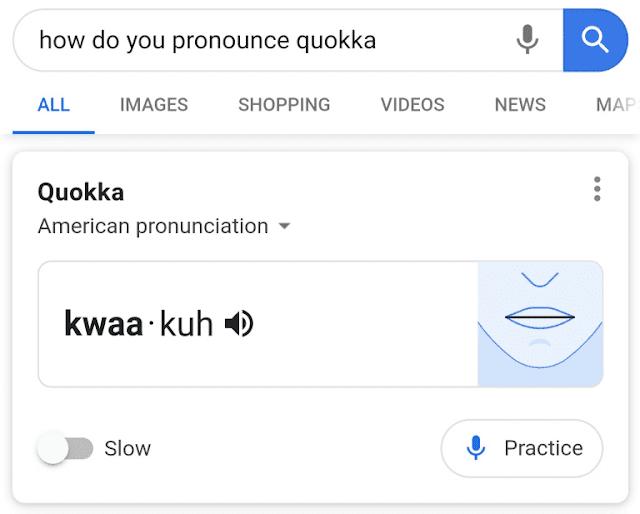 المدرب اللغوي..  غوغل تطلق ميزة لتدريب المستخدمين على النطق الصحيح للكلمات