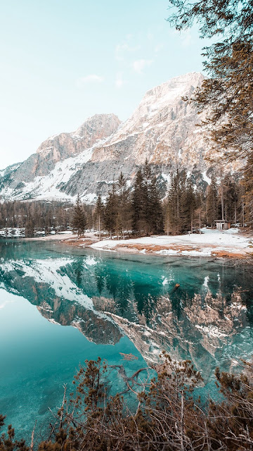 Screen background for free snow mountains, lake, forest, spruce, landscapes