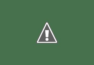 جامعة الجزيرة   وظائف أعضاء هيئة تدريس