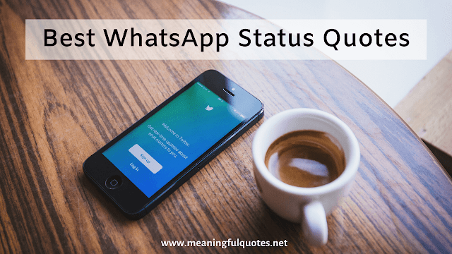 Best WhatsApp Status Quotes for You