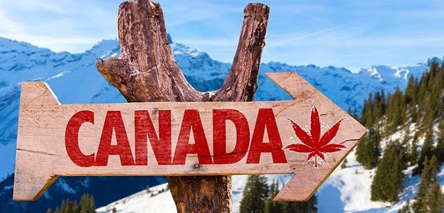 Turismo de Cannabis legal