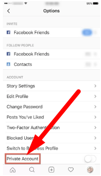 How To See Private Instagram Profiles