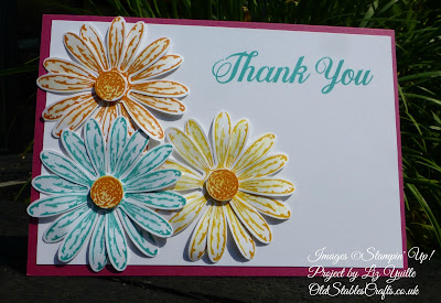 Bright Daisy Delight Thank You Card