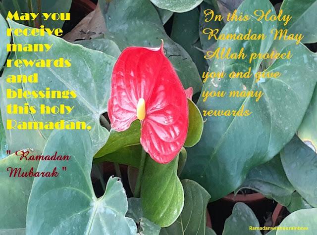 Ramadan best greeting 5