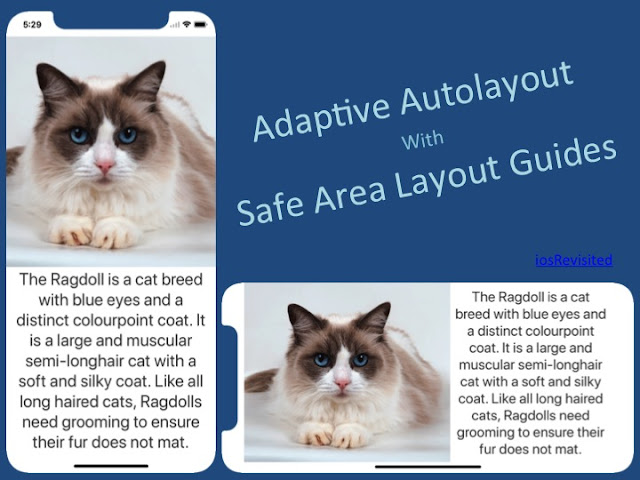 Adaptive Autolayout Programmatically For iPhone X Using SafeAreaLayoutGuide - Swift 4