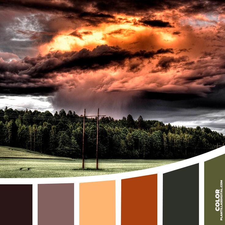 color_590