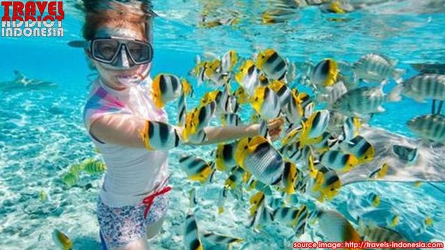 Rubiah Island Aceh Sumatra Travel Addict Indonesia