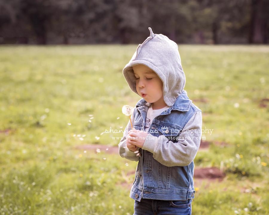 eugene oregon child portrait photographer