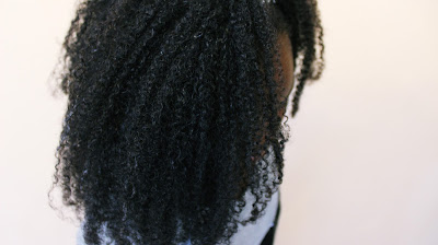 Lil Sis's WASH and GO on Multi-textured Natural Hair