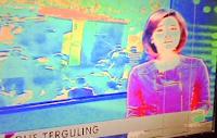 Tv Led Lcd Gambar Tampil Blank Blur Klise Masussanto