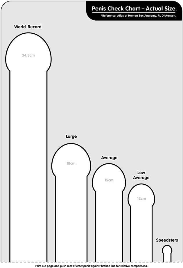 Dimensioni del pene di 27 cm