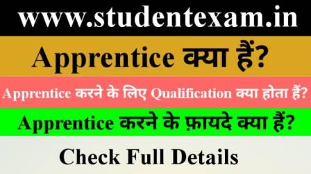 Apprentice Kya Hota Hai in Hindi