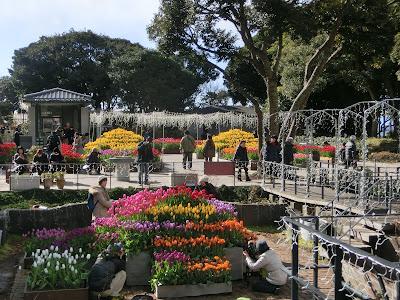 江の島サムエル・コッキング苑