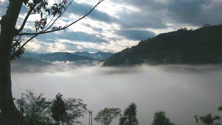 古坑-水梯田農場露營營地 爬山健行遠眺群山看雲海