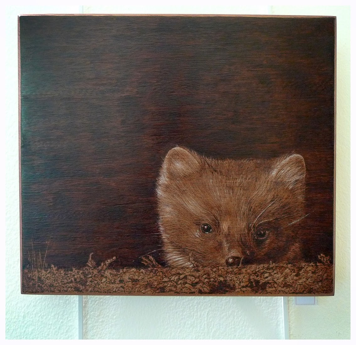 11-Pine-Marten-Eben-Cavanagh-Rautenbach-LeRoc-Animal-Drawings-using-Pyrography-www-designstack-co