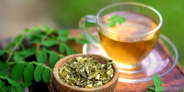 moringa çayı nedir,faydalari - www.kahvekafe.net