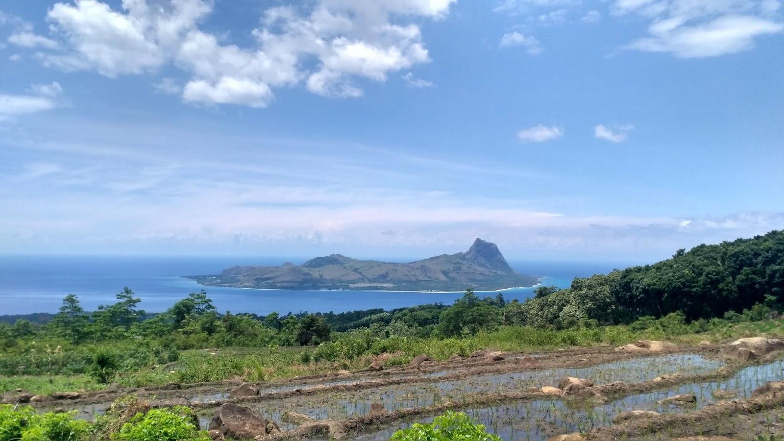 flores road trip pulau mules