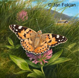 Bilde av digigrafiet 'Tistelsommerfugl'. Digitalt trykk laget på bakgrunn av maleri av oransje sommerfugl. Illustrasjon av Tistelsommerfugl Vanessa cardui i kulturlandskap. Hovedmotivet er en oransje sommerfugl med mørke tegninger. Bakgrunnen er ei eng med blomster og gress. Bildet er kvadratisk.