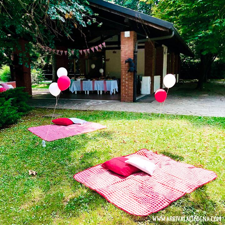compleanno picnic