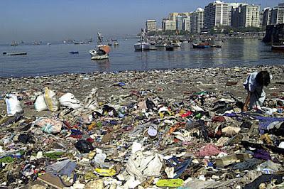 Problema contaminación basura definición