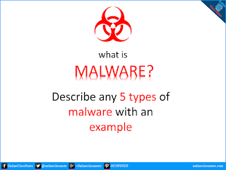 What is malware? Describe any 5 types of computer malware with an example.