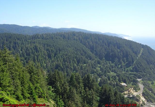 Siuslaw National Forest Oregon